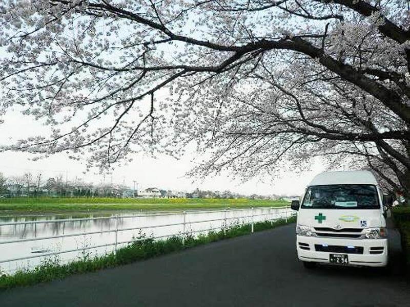 桜と介護車両