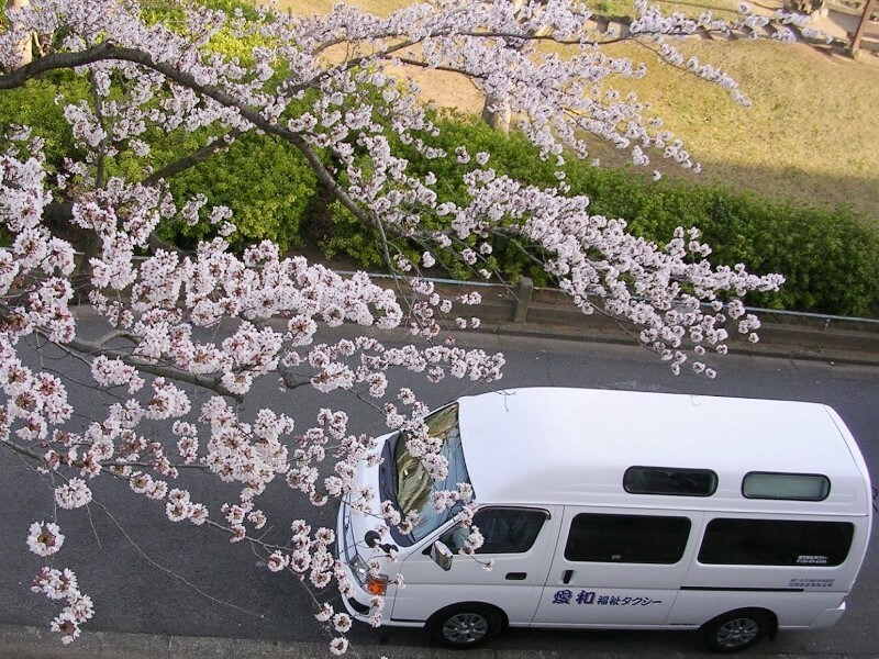 桜と介護車両キャラバン